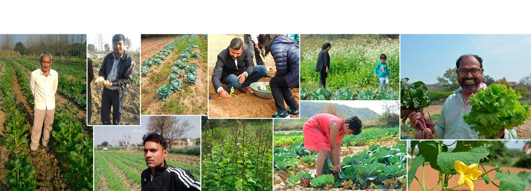 GOFM farmers are an integral part of the Gurgaon community